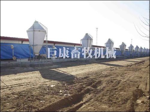河北裕丰京安养殖有限公司betvictor92伟德 (4)